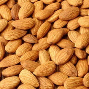 can blenders crush almonds featured